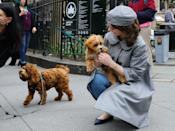 <p>No, really, the actress loves to stop and pet dogs. Come on! Can we blame her?! We'd have to do the same. </p>