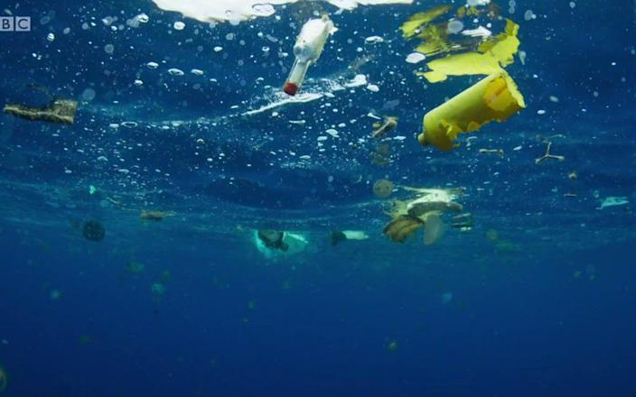Footage showing plastic pollution in the ocean from the programme Blue Planet - Blue Planet