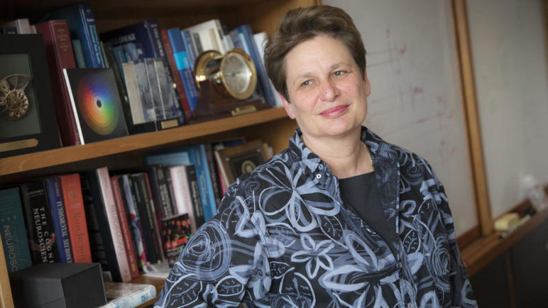 Harvard scientist Catherine Dulac awarded for work on parenting instinct