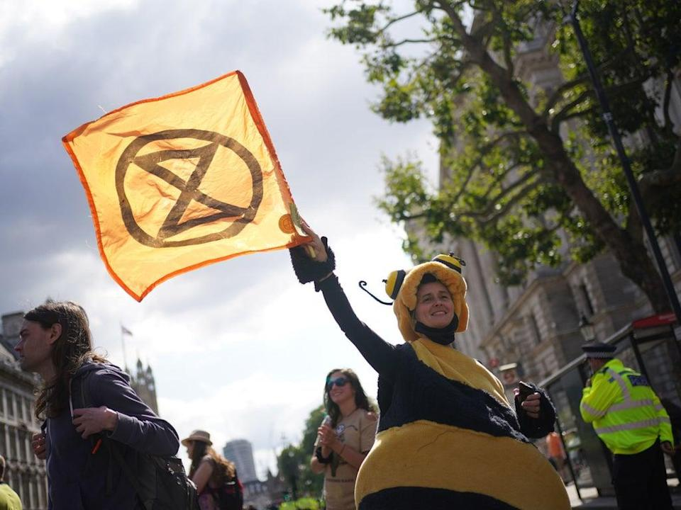 A demonstrator dressed as bee during a protest by members of Extinction Rebellion on Whitehall, in central London on 24 August 2021 (PA)