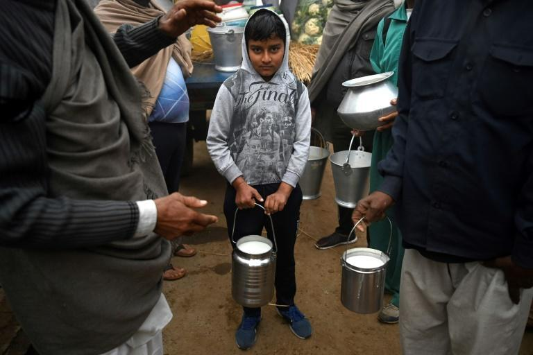 Villagers donate wood, vegetables and fresh milk, which are then transported to the camps by tractor