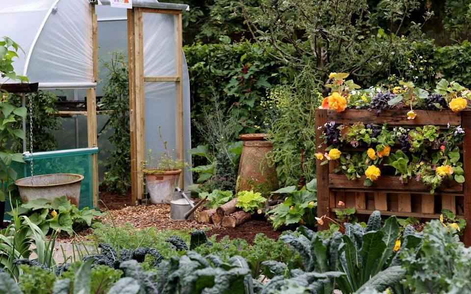 The No Dig Demo Garden, designed by the method's best-known gurus Charles Dowding and Stephanie Hafferty - Clara Molden
