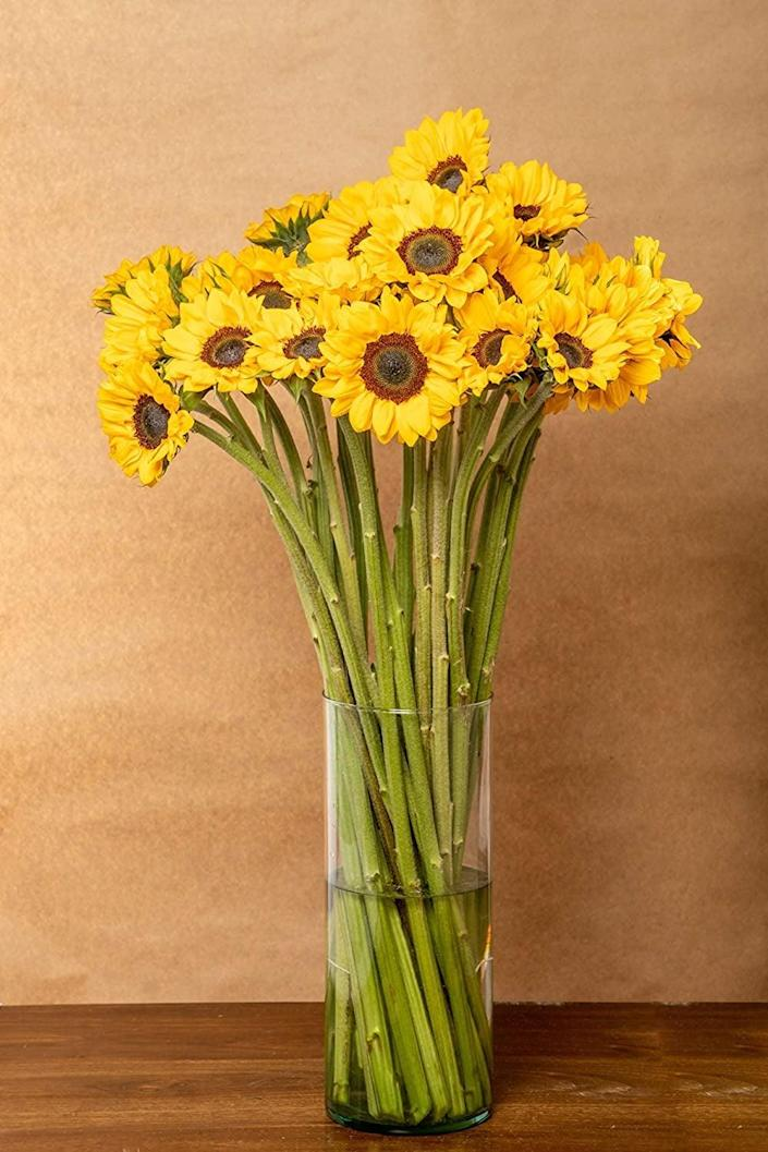 <p>This bright and bold <span>Greenchoice Flowers - Fresh Cut Sunflowers, (15 Stems)</span> ($50) will add some cheer to your coffee table.</p>