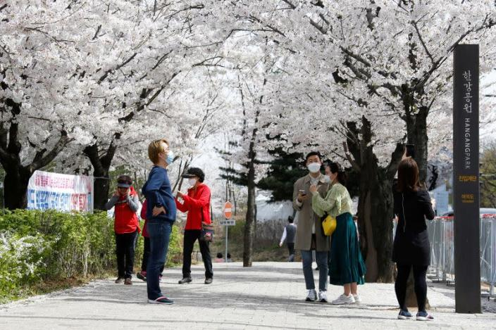 FILE PHOTO: People walk near a cherry blossom street, closed to avoid the spread of the COVID-19, in Seoul