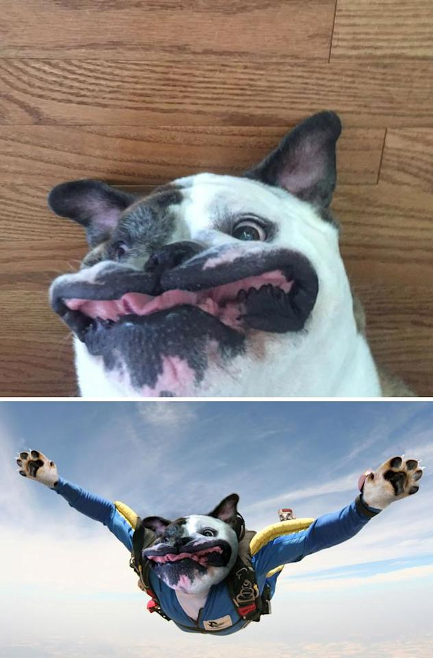 Literally...the face we would make when skydiving.