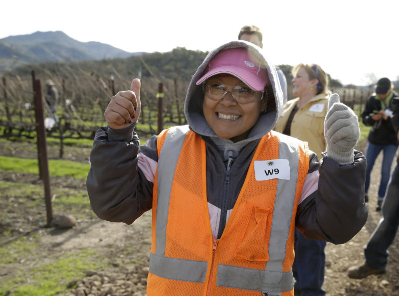 In this Thursday, Feb. 20, 2014 photo, Maria Romero smiles after performing well in the first-ever women's division of the annual Napa Valley Grapegrowers' pruning competition at Beringer Vineyards' Gamble Ranch in Yountville, Calif. (AP Photo/Eric Risberg)