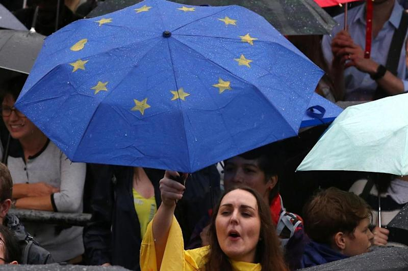Pledge: an anti-Brexit protester in London (AFP/Getty Images)
