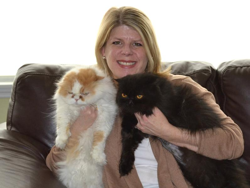This Sunday March 3,2013 photo released by High Paw Media showing Caroline Golon of Columbus, Ohio, with her two Persian cats, Romeo, 9, and Pugsley, 8, right. She started thinking about cleaning products before the kids were born when she noticed how often the cats jumped between floors and counters. She read about green, organic and natural cleaners. Today, she uses only unscented green products or vinegar and water. She uses a water-only steam mop on floors and washes the cats' dishes and litter boxes with hot water and green dish soap. (AP Photo/High Paw Media)
