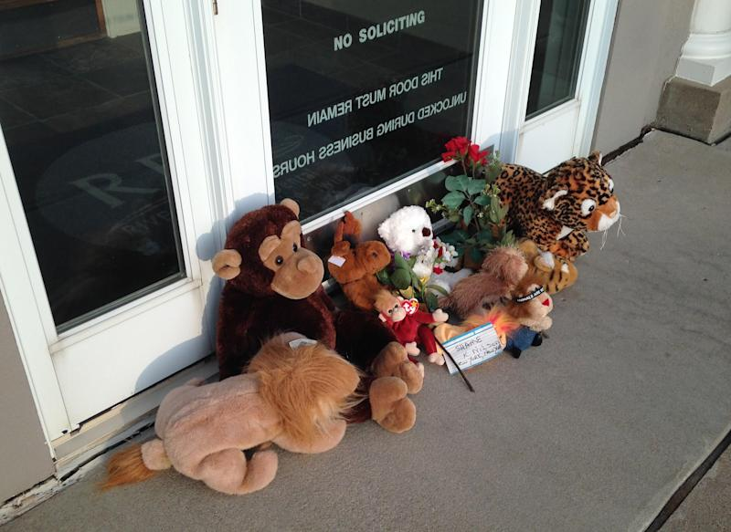 Stuffed animals left by protesters block the doorway of River Bluff Dental clinic after the killing of a famous lion in Zimbabwe, in Bloomington, Minnesota July 28, 2015. Wildlife officials on Tuesday accused an American hunter of killing Cecil, one of the oldest and most famous lions in Zimbabwe, without a permit after paying $50,000 to two people who lured the beast to its death. The lion was lured out of Hwange National Park using a bait and was shot by dentist Walter James Palmer, Johnny Rodrigues, chairman of Zimbabwe Conservation Task Force (ZCTF), told reporters. Picture taken July 28, 2015. REUTERS/David Bailey