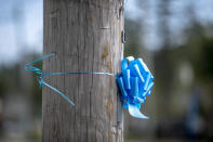 Blue ribbons in memory of Gabby Petito are scattered across her hometown of Blue Point, N.Y. on Thursday, Sept. 23, 2021. Search teams were back out at a Florida nature park to look for the boyfriend of Gabby Petito, the young woman who authorities say was killed while on a cross-country trip with him. (AP Photo/Brittainy Newman)
