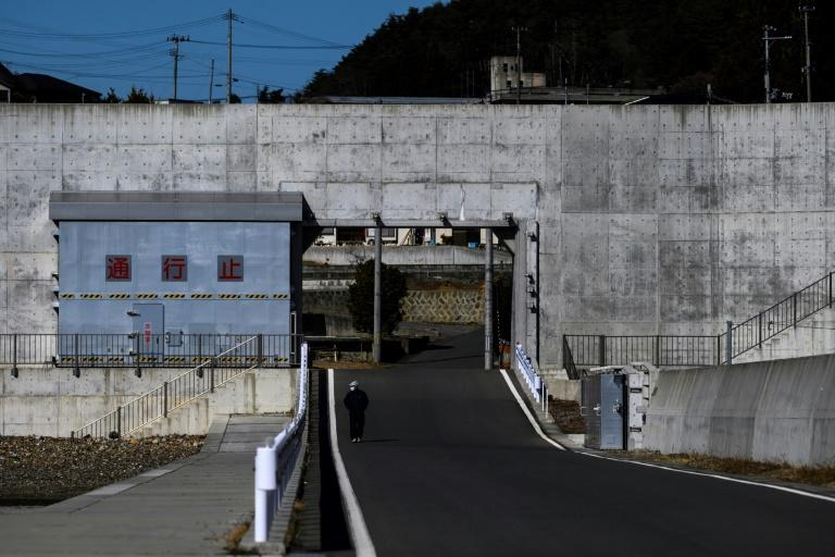 The 2011 tsunami left a legacy cast in concrete along much of Japan's northeastern coast