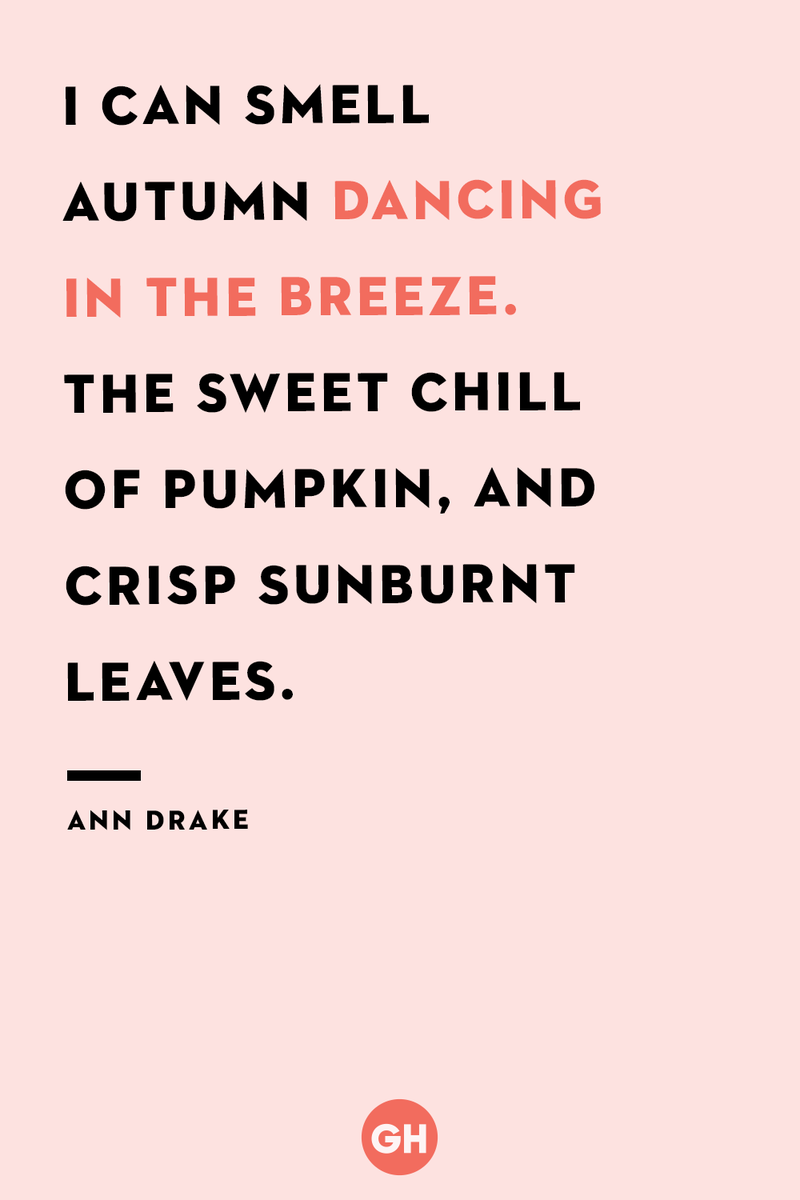 <p>I can smell autumn dancing in the breeze. The sweet chill of pumpkin, and crisp sunburnt leaves.</p>