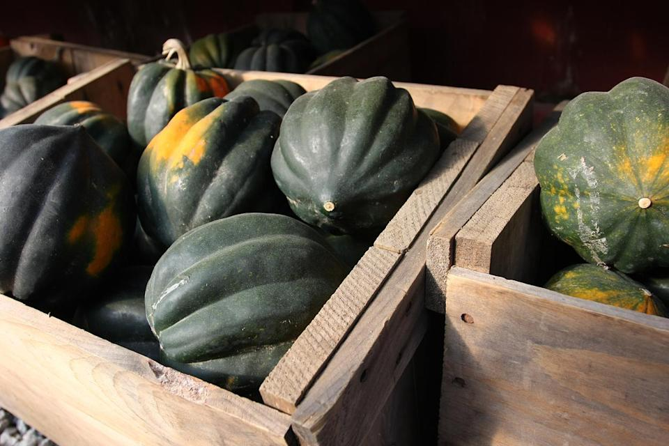 """<p>Winter squash, like acorn squash or butternut, are perfect for <a href=""""https://www.thedailymeal.com/cook/slow-cooker-soups-and-stew-recipes?referrer=yahoo&category=beauty_food&include_utm=1&utm_medium=referral&utm_source=yahoo&utm_campaign=feed"""" rel=""""nofollow noopener"""" target=""""_blank"""" data-ylk=""""slk:making cozy soups"""" class=""""link rapid-noclick-resp"""">making cozy soups</a> and casseroles, but you may not know how to store the big, clunky gourds. Before you cut one open, you should store it in a cool, dry place at room temperature. You can set it on your kitchen counter, for example, or place it in your pantry. After you've sliced it, you can save part of the squash for later by wrapping the entire piece in aluminum foil. Place the wrapped portion in a refrigerator drawer, where it should stay ready to use for two or three weeks.</p>"""