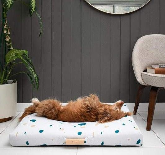 "<strong><h2>Lay Lo Dog Bed</h2></strong><br>""Freddie is pretty used to just plopping himself on the couch, but I wanted to give him his own space in our home. Lay Lo's stylish bed options caught my eye for their design, but I was pleasantly surprised by the quality and construction of these mattresses and covers. I was concerned about getting a bed that is mostly white, but the covers are super easy to wash and dry quickly, too. (This is a necessity if you frequent parks with mud like we do.) The best part though: my dog <em>immediately</em> made himself at home on his new bed (see photographic evidence above). Needless to say we are now big fans of the Lay Lo dog beds."" —<em>Leora</em><br><br><br><strong>Lay Lo</strong> Classic White Terrazzo Dog Bed or Bed Cover, $, available at <a href=""https://go.skimresources.com/?id=30283X879131&url=https%3A%2F%2Fwww.laylopets.com%2Fcollections%2Fall%2Fproducts%2Fwhite-terrazzo-dog-bed-or-dog-bed-cover"" rel=""nofollow noopener"" target=""_blank"" data-ylk=""slk:Lay Lo"" class=""link rapid-noclick-resp"">Lay Lo</a>"