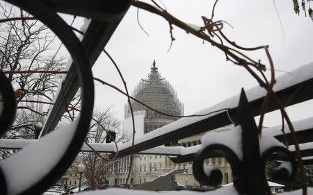 The U.S. Capitol building is seen through a snow covered trellis at the start of the 114th Congress on the Capitol grounds in Washington