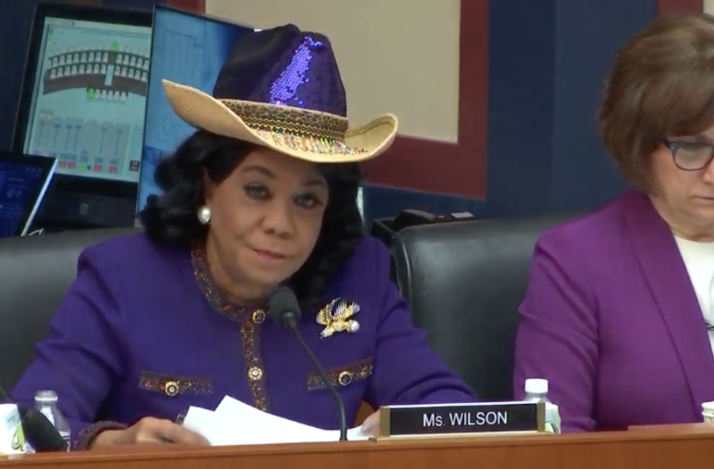 Rep. Frederica Wilson (D-FL) speaks during a hearing on December 12, 2019. (Screenshot/YouTube)
