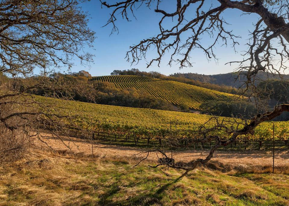 "The charming town of St. Helena and the surrounding area is home to many of <a href=""https://www.cntraveler.com/story/a-guide-for-a-solo-trip-to-napa-valley?mbid=synd_yahoo_rss"" rel=""nofollow noopener"" target=""_blank"" data-ylk=""slk:Napa Valley's finest wineries"" class=""link rapid-noclick-resp"">Napa Valley's finest wineries</a>. Located on Highway 29 between Calistoga and Yountville, St.Helena is for anyone whose ideal getaway includes delicious wine, Michelin-starred restaurants, art galleries, and maybe even a hot air balloon ride. The Main Street is dotted with local shops, restaurants, and bakeries, and the weather is mild year-round, making it an excellent place to stroll no matter the season."