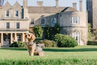 """<p>If you love Michelin-starred dining, sprawling country hotels, amazing spas and travelling with your four-legged friend, Wiltshire's Lucknam Park is the place for you. From the moment you make your way along the sweeping drive, you'll feel all your stresses melt away.</p><p>Inside, there's plenty to spoil both you and your dog (£25 extra per night for dogs) including informal and formal dining spaces, plush bedrooms and lots of treats! You'll love the open-air hydrotherapy pool and all the walks you can enjoy with your pooch over a two-day break.</p><p><a class=""""link rapid-noclick-resp"""" href=""""https://www.redescapes.com/offers/wiltshire-colerne-lucknam-park"""" rel=""""nofollow noopener"""" target=""""_blank"""" data-ylk=""""slk:FIND OUT MORE"""">FIND OUT MORE</a></p><p><strong>Sign up for inspirational travel stories and to hear about our favourite financially protected escapes and bucket list adventures.</strong></p><p><a class=""""link rapid-noclick-resp"""" href=""""https://hearst.emsecure.net/optiext/optiextension.dll?ID=y_jyzVjkVOLriSE7FGQSZGKd2N3MLYoM_Oq8NR9MT8hFZnl8ZsrCUG075elObNgTkQgWpkPrG59Ryx"""" rel=""""nofollow noopener"""" target=""""_blank"""" data-ylk=""""slk:SIGN UP"""">SIGN UP</a></p>"""