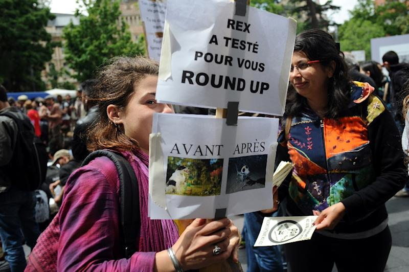 Protesters at a march against Monsanto in Toulouse on May 23, 2015