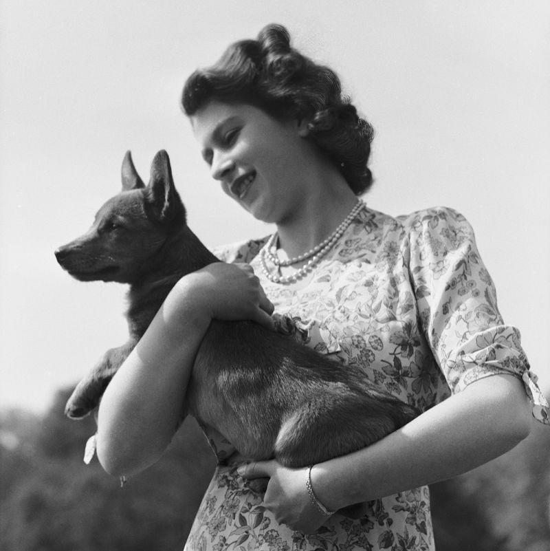 <p>For her 18th birthday, Elizabeth got her own corgi named Susan. The Royal Collection trust says that every corgi she went on to breed were descendants of this OG dog from the '40s.</p>