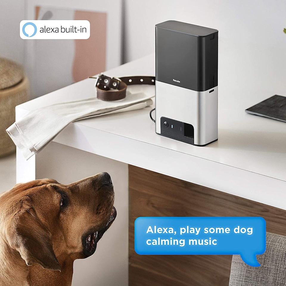 In addition to keeping an eye on pets, the Petcube Bites 2 also connects to Alexa. Image via Amazon.