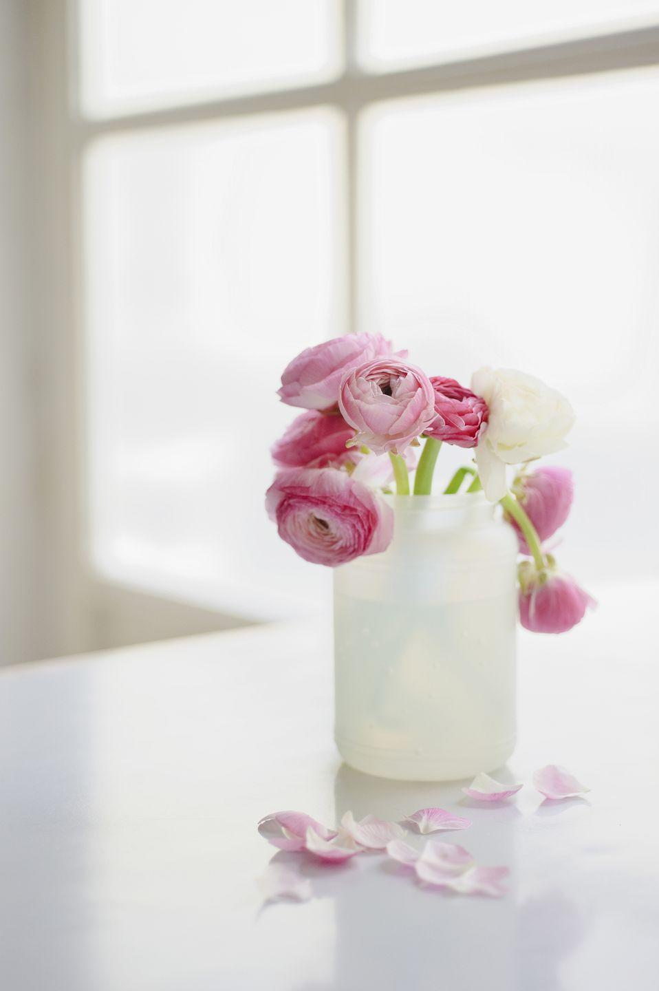"""<p>If you've tried everything from a <a href=""""https://www.countryliving.com/gardening/a35326/make-fresh-flowers-last-longer/"""" rel=""""nofollow noopener"""" target=""""_blank"""" data-ylk=""""slk:spritz of hairspray"""" class=""""link rapid-noclick-resp"""">spritz of hairspray</a> to <a href=""""https://www.countryliving.com/gardening/a37775/cut-flower-food-recipe/"""" rel=""""nofollow noopener"""" target=""""_blank"""" data-ylk=""""slk:this recipe"""" class=""""link rapid-noclick-resp"""">this recipe</a> to make your petals last longer, but they've finally met their maker, to the compost pile they go. Same goes for dead plants. No green thumb? Try a <a href=""""https://www.countryliving.com/gardening/garden-ideas/advice/g1341/indoor-gardening/"""" rel=""""nofollow noopener"""" target=""""_blank"""" data-ylk=""""slk:houseplant"""" class=""""link rapid-noclick-resp"""">houseplant</a> that's harder to kill.</p>"""