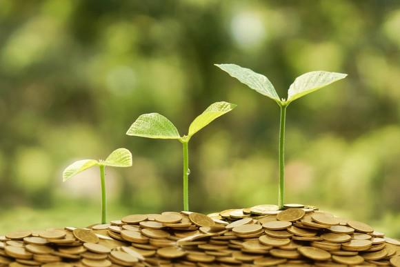 Young green plants growing on a pile of golden coins.