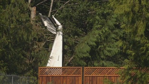 A single engine four-seater plane crashed into the backyard of a home in Mill Bay on Monday. (CHEK News - image credit)