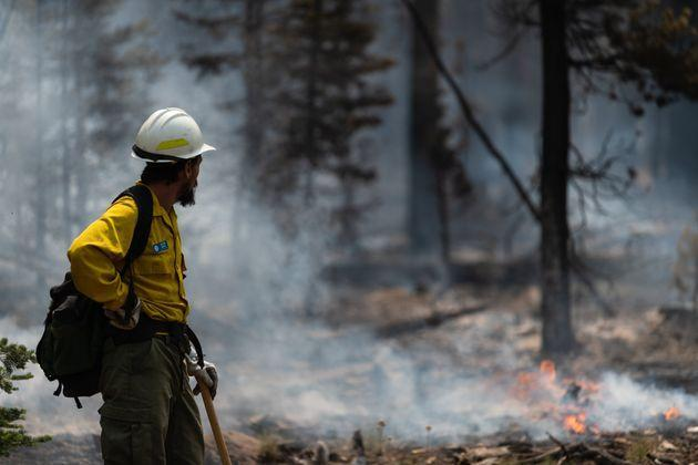 Fire Information Officer Jacob Welsh observes smoldering trees on the northern front of the Bootleg Fire on July 23 near Silver Creek, Oregon. (Photo: Mathieu Lewis-Rolland via Getty Images)