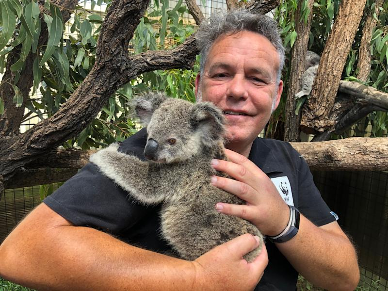 Darren Grover, an official withthe World Wide Fund for Nature-Australia enjoys a cuddle with Maryanne as the koala continues her recovery. (Photo: WWF Australia)