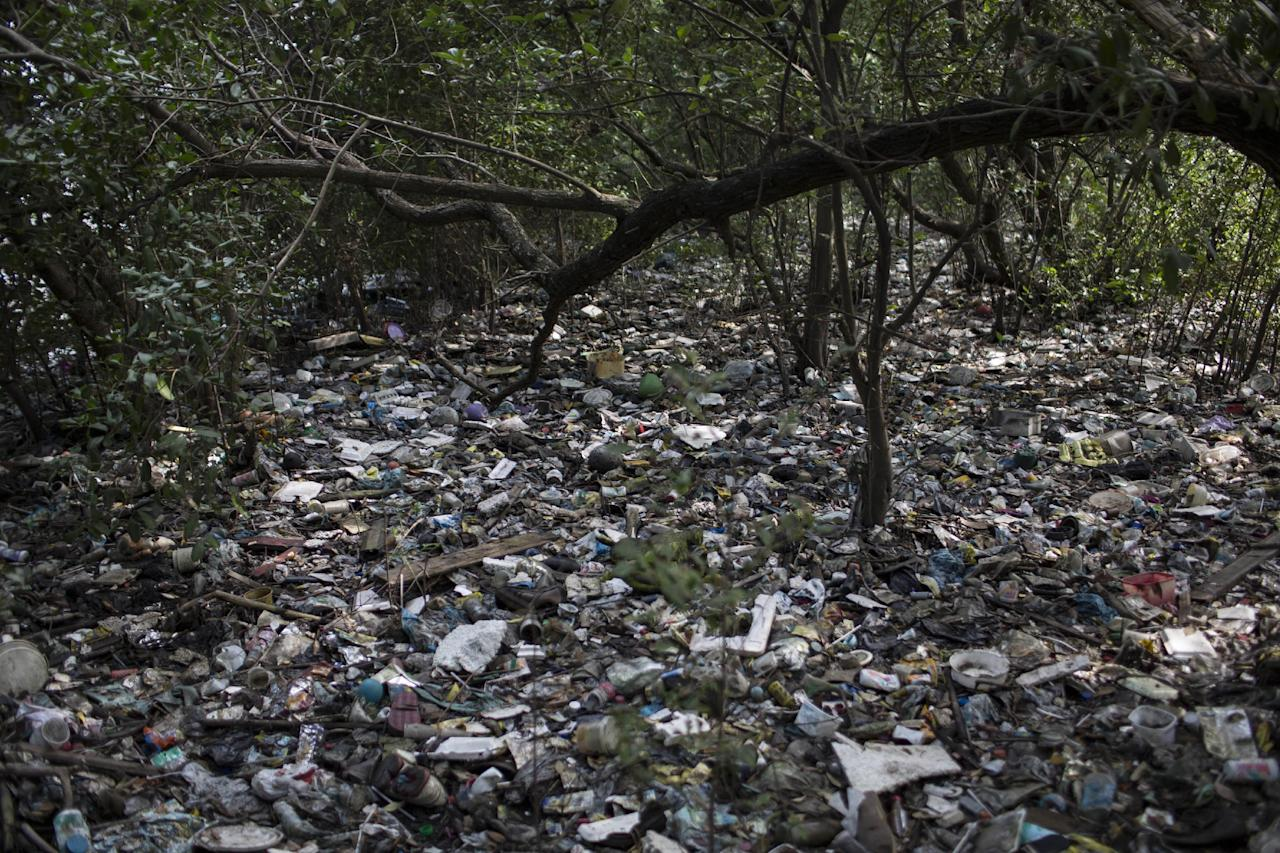 In this May 15, 2014 photo, trash litters a forested area on the shores of Guanabara Bay in Rio de Janeiro, Brazil. The country will not make good on its commitment to clean up Rio de Janeiro's sewage-filled Guanabara Bay by the 2016 Olympic Games. Authorities pledged to cut by 80 percent the flow of pollution into Guanabara Bay by the 2016 Games through the expansion of the sewage network and the construction of River Treatment Units, or RTUs, built at the mouths of rivers flowing into the bay. The facilities would filter out much of the sewage and trash. But little progress has been made on either front. (AP Photo/Felipe Dana)