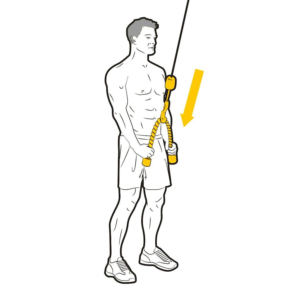 """<p>""""This superset hits your tris from multiple angles,"""" says Stafford. Set up a rope attachment on a high pulley and face towards it. Grip the rope and keep your elbows close to your sides as you fully extend your arms, finishing with your palms down. Complete your reps, then move on to the next move with no rest.<br></p>"""