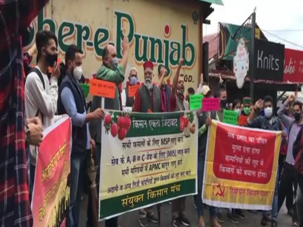 Visual of farmers protesting against falling prices of apples (Photo/ANI)
