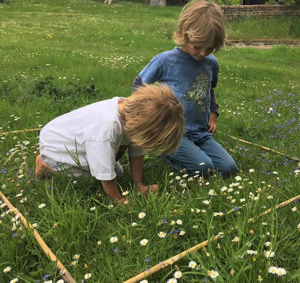 Two boys counting daisies in a quadrat for 'every flower counts' survey (Archie Thomas/Plantlife/PA)