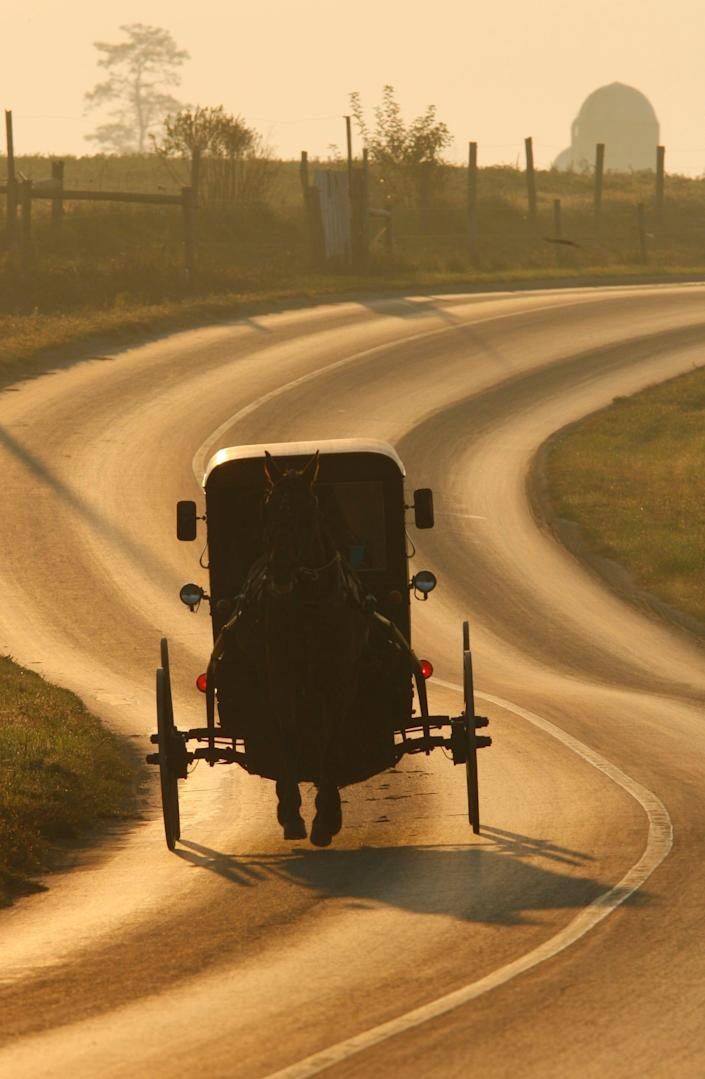 There are many experiences to be had in Amish Country, located in Lancaster, Pennsylvania. Families can take part in tours, museums and even buggy rides.