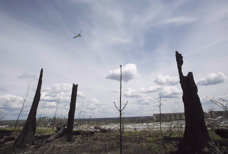 <p>A police helicopter flies past burnt trees in the Timberlea neighbourhood in Fort McMurray on June 2, 2016. A bridge in the community was named Responders Way as a tribute to the first responders who helped during the fire. Photo from CP. </p>