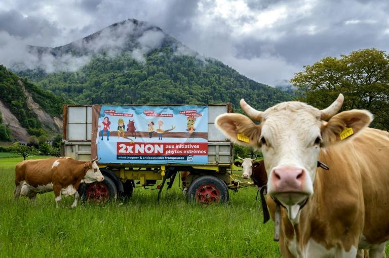 Two anti-pesticide proposals have triggered the most noise and fury ahead of Sunday's vote in Switzerland on a series of issues