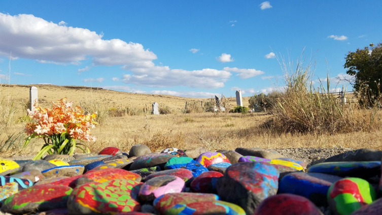 Hand-painted rocks cover Max Carver's burial site on his family's ranch.