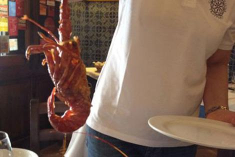 American lobsters work great in traditional Sicilian seafood soup.