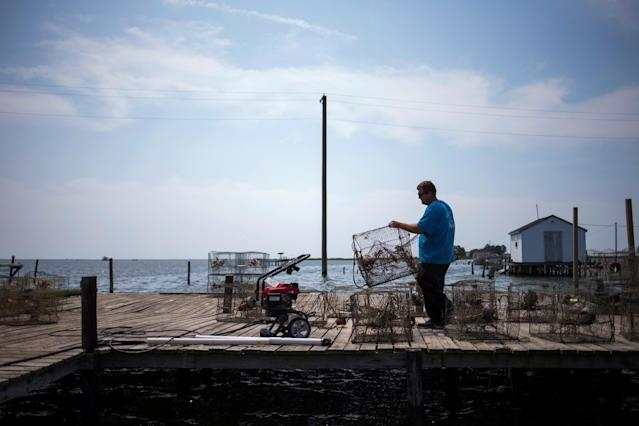 <p>Local islander Jim Shores lays out his crab traps to dry along a dock on Tangier Island, Virginia, Aug. 2, 2017. (Photo: Adrees Latif/Reuters) </p>