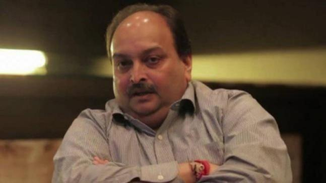 According to the probe agency, the ED has provisionally attached immovable properties, valuables, vehicle, bank account having total value of Rs 24.77 crore of accused Mehul Choksi under Prevention of Money Laundering Act (PMLA) in Punjab National Bank fraud case.