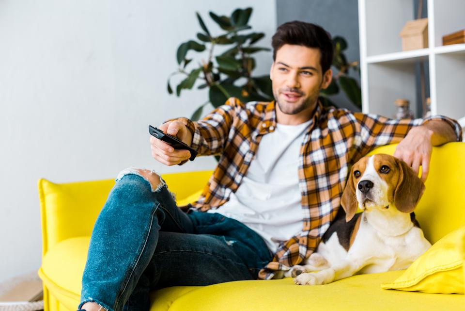 Even your pooch will appreciate this TV upgrade (Getty Images).