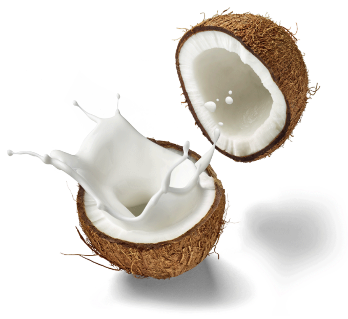 Not ex-shell-ent for a latte: Coconut milk