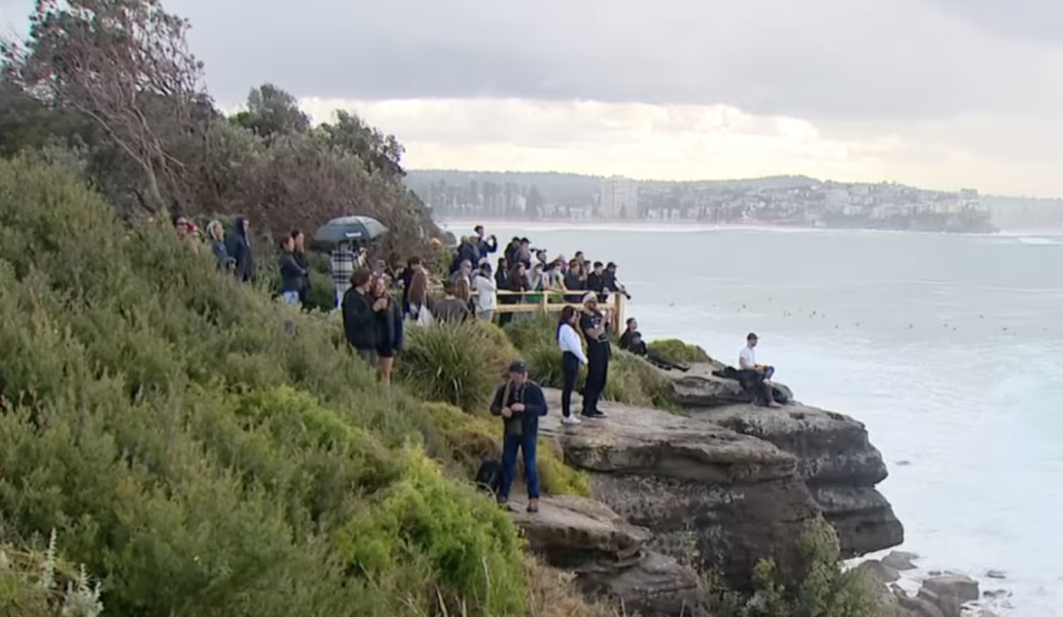 People stop to take in the view at a headland in Manly. Source: 7 News
