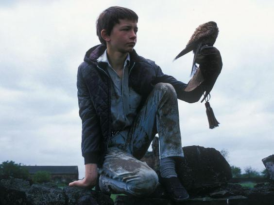 Wing and a prayer: Billy (David Bradley) with his feathered companion