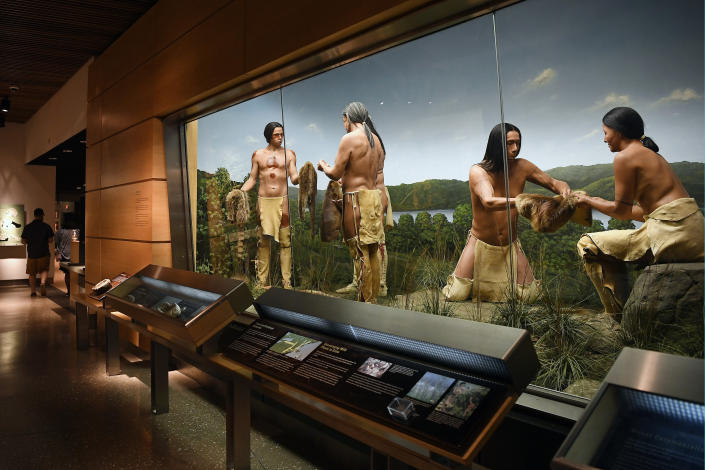 An exhibit on the fur trade is seen at the Mashantucket Pequot Museum & Research Center, in Mashantucket, Conn., Wednesday, Aug. 28, 2021. The museum is the world's largest Native American museum. Connecticut and a handful of other states have recently decided to mandate students be taught about Native American culture and history. (AP Photo/Jessica Hill)