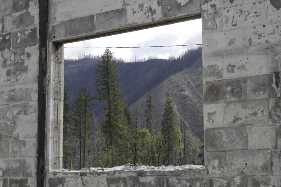 Burned forest is seen through the broken-out window of a business destroyed by flames in Blue River, Ore., on May 17, 2021. Blue River, an unincorporated community along the McKenzie River east of Eugene, Oregon, was one of many places in western Oregon devastated last fall during a 72-hour firestorm. Oregon's unprecedented 2020 wildfire burned 4,000 homes and more than 1 million acres, many of them in rainy areas of the state that aren't normally associated with extreme wildfire. (AP Photo/Gillian Flaccus)