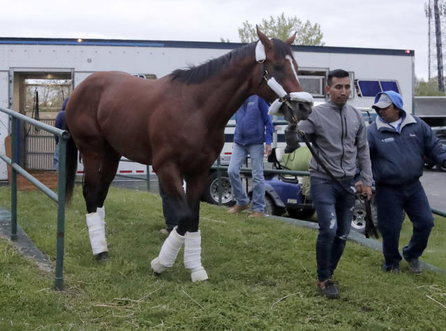 Maximum Security, the horse disqualified from the Kentucky Derby horse race, is led off a trailer by Edelberto Rivas upon the horse's arrival at Monmouth Park Racetrack, Tuesday, May 7, 2019, in Oceanport, N.J. The Kentucky Horse Racing Commission denied the appeal of Maximum Security's disqualification as Kentucky Derby winner for interference, saying the stewards' decision is not subject to appeal. Racing stewards disqualified Maximum Security to 17th place on Saturday and elevated Country House to first after an objection filed by two jockeys. Stewards determined he impeded the paths of several horses in the race. Owner Gary West confirmed that Maximum Security won't run in the upcoming Preakness, saying there's no need without a chance to compete for the Triple Crown. (AP Photo/Julio Cortez)
