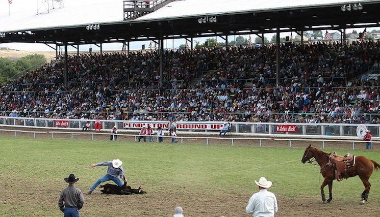 The Pendleton Round-up in its more famous use — Wikipedia