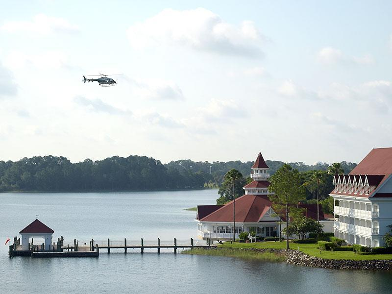 Disney World Guests Were Kept in The Dark About Deadly Alligator Attack: 'Why Not Tell Us?'  Animals & Pets, Death, Walt Disney World, Around the Web, Real People Stories